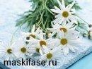 Цветы ромашки от синяков под глазами