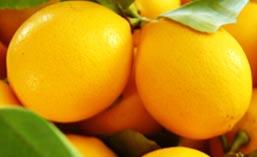 Маска из лимона для избавления от черных точек