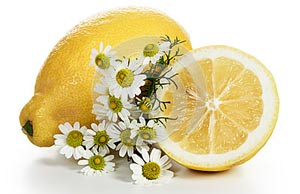 Осветление волос ромашкой с лимоном